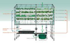 Container SA: 5 Estufas em Container: Fazendas Urbanas Pop-Up