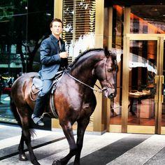 [For Sg Arts Fest] Shiny centaur. Singapore Art, Camille, Art Festival, My Photos, Horses, Animals, Singapore, Kunst, Animales