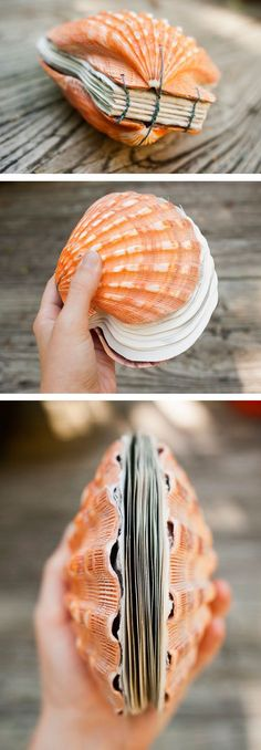 TOP Ideas On Designing DIY Photo Album - Cozy DIY Seashell Crafts, Beach Crafts, Fun Crafts, Seashell Art, Bound Book, Diys, Scallop Shells, Book Making, Book Crafts