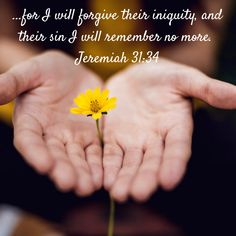 for I will forgive their iniquity, and their sin I will remember no more. Christian Encouragement, Words Of Encouragement, Jeremiah 31, Forgive And Forget, Asking For Forgiveness, Pray For Us, Beautiful Songs, Bible Verses Quotes