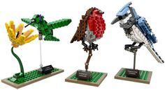 #Lego new series #Birds block http://thetechscoopblog.blogspot.com
