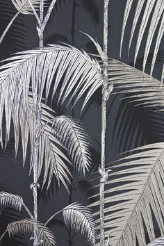 Palm Jungle Wallpaper Contemporary Illustrated Palm tree design wallpaper in metallic silver on Black.