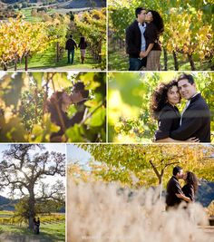Winery Engagement Pictures