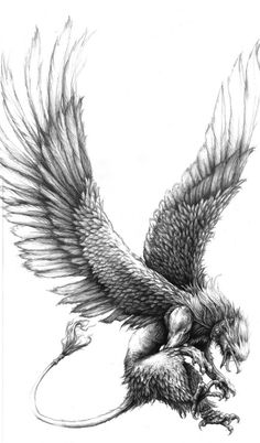 the griffin is by far my favorite mythical beast. Griffin Tattoo, Mythological Creatures, Mythical Creatures, Greif Tattoo, Gryphon Tattoo, Griffin Drawing, Myths & Monsters, Mythology Tattoos, Creature Design