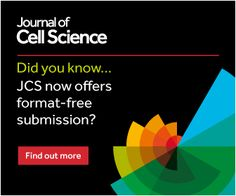 The importance of stupidity in scientific research | Journal of Cell Science