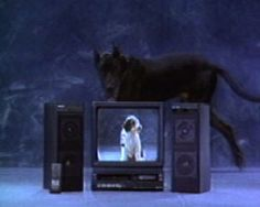 """Read more: https://www.luerzersarchive.com/en/magazine/commercial-detail/gradiente-25750.html Gradiente Gradiente """"O cao que mia"""" [00:30]# To demonstrate the inferior sound quality of some very expensive TV equipment, a dog appears and opens its mouth. Out comes a cat's meowing. With Gradient video and audio equipment this type of thing could never happen.or the Renault 19 when it gets st. Tags: DPZ, Sao Paulo,Gradiente,Fernando Meirelles,Ruy Lindenberg,Murilo Felis Berto,Olhar Eletronico…"""