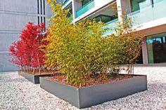 Giardiniere, Comano, Costruzione Giardini, Progettazione, Giardini, Manutenzione Giardini, Pavimentazioni, Servizio Invernale, Lavori Forest