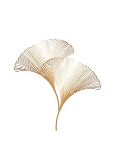 Ginkgo Leaves Gold Poster in the group Posters & Prints / Botanical at Desenio AB Gold Poster, Print Poster, Poster 70x100, Tattoo Geometrique, Desenio Posters, Groups Poster, Online Posters, Buy Posters, Golden Leaves
