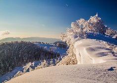 Zima, Góry, Lasy