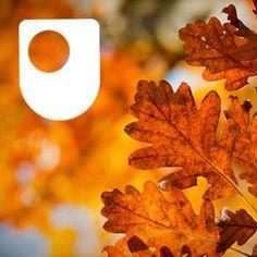 Science, Maths & Technology - OpenLearn - Open University