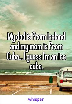 My dad is from Iceland and my mom is from Cuba… I guess I'm an ice cube. My father is from Iceland and my mother is from Cuba … I think I am an ice cube. Funny Shit, Funny Puns, Stupid Funny Memes, Funny Relatable Memes, Funny Texts, The Funny, Funny Stuff, Hilarious Jokes, Funny Things