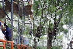 all(zone) MAIIAM contemporary art museum chiang mai thailand designboom
