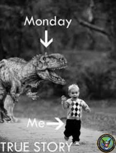 We've all been there.. #MondayBlues