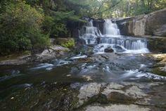 Alsea Falls (directions at link)