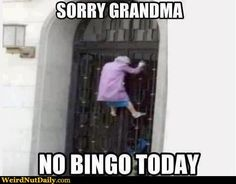 Check out: Funny Memes - No Bingo today. One of our funny daily memes selection. We add new funny memes everyday! Bookmark us today and enjoy some slapstick entertainment! Haha Funny, Funny Memes, Lol, Funny Stuff, Funny Things, Funny Shit, Funny Quotes, Jokes, Random Stuff