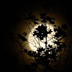 Mein Mond