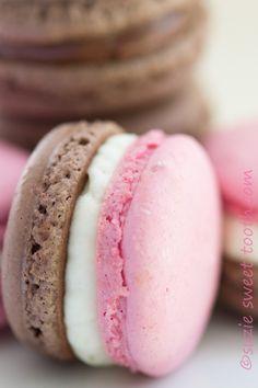 neapolitan macaron closeup