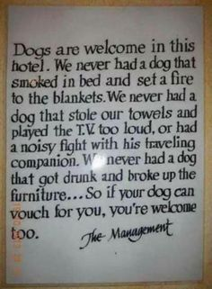 A hotel Manager Telling the Difference Between Dogs and so Called Human Beings