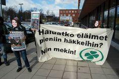 Kampanjointia 2011 eduskuntavaalien alla.