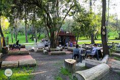 Esplanada da Mata - Parque de Alvalade