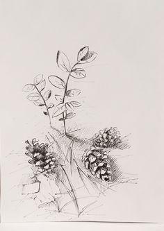 Pen drawing: fir cones. Forest #forest #fir cones #pen #brushpen #drawing #graphics #art #sketch #blackwhite #Svetlana_Senchurova
