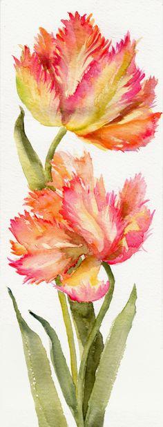 Parrot Tulips ORIGINAL watercolor on paper by Thepoetgarden, $33.00