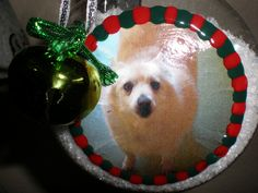 Holiday Paws & Crafts ornament from my dog.