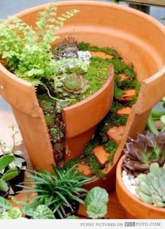 Now I know what to do with my broken pots! Stairway flower pot - Cool flower pot with a little spiral stairway.