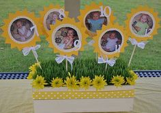 monthly pics display...great idea for a 1st birthday party