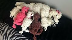 life size poodle puppies by Cortney Nicole - YouTube