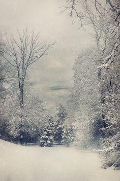 First Snow ~ By Kim Zier