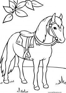 At Boyama Sayfası