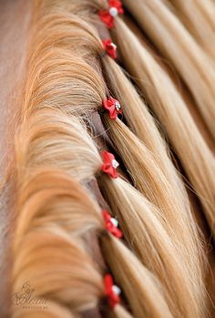 Mähne #pferd #pferdestyling