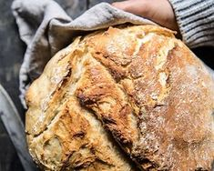 This One Simple Trick Is the Key To Softening Stale Bread Dutch Oven Bread, Bread Oven, Stale Bread, Dutch Oven Recipes, Easy Bread, Sourdough Bread, Bread Baking, Knead Bread Recipe, No Knead Bread