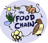 food chains on pinterest kids corner learning games and