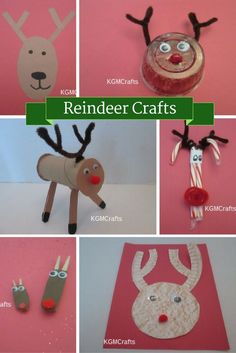 Wonderful - Reindeer
