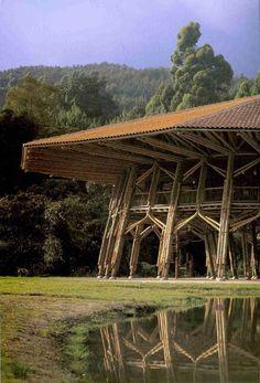 El poder de las construcciones en bambú por Gunter Pauli y su Economía Azul