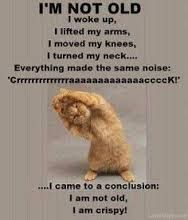 Image result for humour quotes