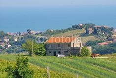 Country of Acquaviva Picena, view over a country house with sea background
