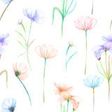 Watercolor -Cosmos Flowers- - Download From Over 53 Million High Quality Stock Photos, Images, Vectors. Sign up for FREE today. Image: 21665553