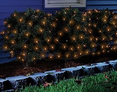 Celebrations Halloween Net Light Orange * Find out more about the great product at the image link. (This is an affiliate link) Starry String Lights, Indoor String Lights, Spider Light, Seasonal Decor, Holiday Decor, Holiday Lights, Outdoor Fairy Lights, Net Lights, Pumpkin Lights