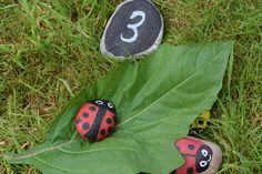 Painted pebbles / RHS Campaign for School Gardening