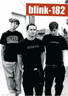 The Blink-182 post that HMV widely sells, almost very hardcore Blink owns this poster :p