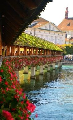 Wordless Wednesday: Luzern, Switzerland - Only Passionate Curiosity Places Around The World, Oh The Places You'll Go, Places To Visit, Around The Worlds, Wonderful Places, Great Places, Beautiful Places, Luzern Switzerland, Switzerland Summer
