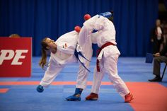 The calendar of the Karate1 Premier League for 2015 has been disclosed. A total of 8 events are planned. As it is the case since the creation of the WKF Premier League, Paris will open the season i...