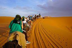 deserto de merzouga Monument Valley, Travel, Travel Photography, Morocco, Camper, Voyage, Trips, Viajes, Destinations