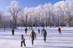 Google Image Result for http://cdn-meetings.canada.travel/sites/default/files/ice_skating_on_the_river_trail_in_winnipeg_manitoba_48394.jpg%3F1314139505