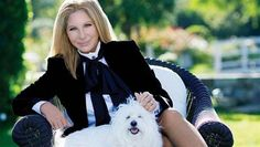 Funny Girl, fuzzy pooch: Barbra Streisand and her pup join Instagram