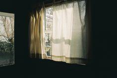 ++ photography : bonniecakes