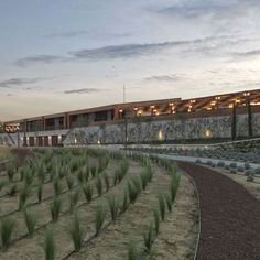 LA Winery: Location: 35860 Torbali/Izmir, Turkey Year of Construction: 2014 Architects: Kreatif Architects  Wood, stone, concrete are some of the material choices used on this modern winery in Turkey.